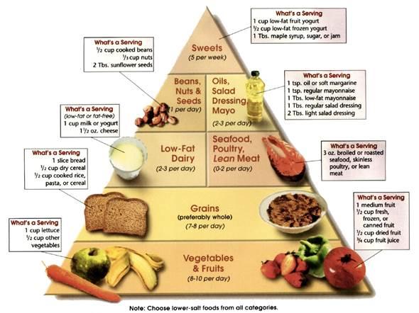 the DASH diet pyramid