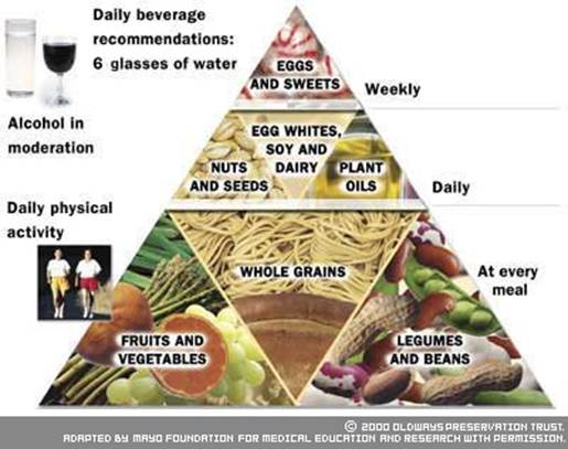 vegetarian diet pyramid