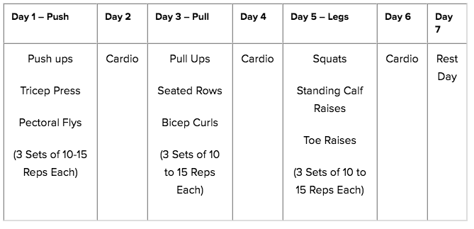 The Push-Pull Legs Routine That Works for Literally Everyone