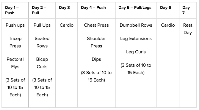 Push Pull Legs Routine 2