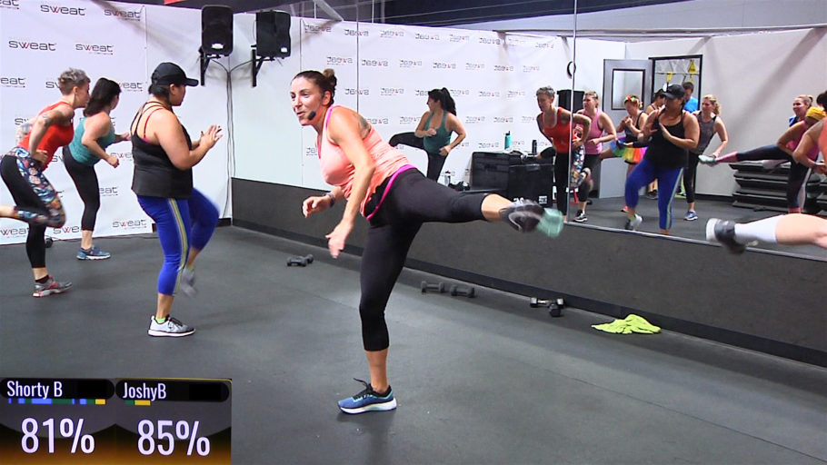 30 Minute kickboxing video Basics and Burners