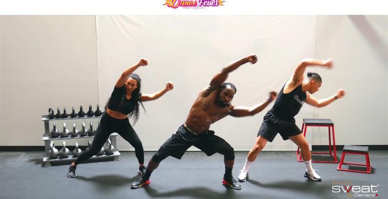 Super Fun Online Dance Cardio Workout Dance Fever 3D - EARTH